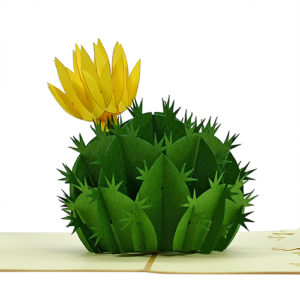 cactus flower popup card